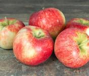 La Boite à Herbes - Pomme Reine De Reinette - 3kg