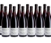 Domaine Tupinier Philippe - Bourgogne Rouge 2015  - 12 Bouteilles De 75 Cl