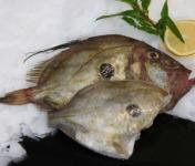 Pêcheries Les Brisants - Ulysse Marée - St-pierre - Prêt A Cuire - 400g