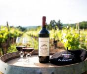 Domaine la Paganie - Vin Rouge de la Réserve Des Henry - AOC Cahors 2017 - en Conversion Bio