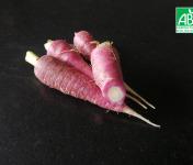 Micro-Ferme de Carcouet - Carottes Rouges Bio - 3 kg