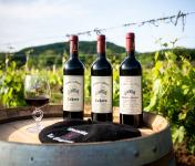 Domaine la Paganie - Coffret de 3 Bouteilles de Vins Rouges - AOC Cahors - 2015, 2016 Et 2017 Réserve Henry - en Conversion Bio