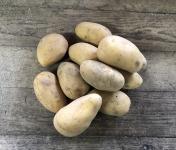 EARL Langevine - Pomme de terre CONSOMMATION variété Charlotte BIO 2kg