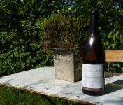 Domaine Ghislain Kohut - Lot 3 Bouteilles de Bourgogne Aligoté AOC