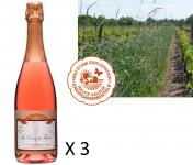 Le Clos des Motèles - AOC Crémant De Loire Rosé Sec 3 Bouteilles