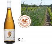 Le Clos des Motèles - Aoc Anjou Blanc Sec 2019 : Cuvée Plaisir. 1 Bouteille