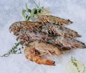 Côté Fish - Mon poisson direct pêcheurs - Gambas 500g