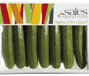 Maison Sales - Végétaux d'Art Culinaire - 11- Mini Courgette - 13 Pièces Minimum