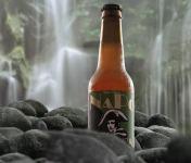 Brasserie NaPo - NaPo Session IPA - Bière Artisanale Corse