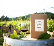 Domaine la Paganie - Vin Rouge en Cubitainer 10 litres - AOC Cahors - en Conversion Bio