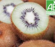 Mon Petit Producteur - Kiwi Hayward Vert Bio [vendu Par 10]