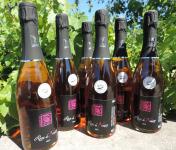 Domaine des Bourrats - Méthode Traditionnelle Rose de Noirs - 6 Bouteilles