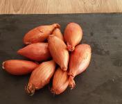Gourmets de l'Ouest - Echalotes de Saint-malo
