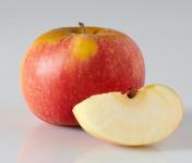Les Côteaux Nantais - Pomme Reine des Reinettes AB&Demeter -4kg