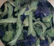 Les Jardins du Mas de Greil - Verveine-mauve-romarin, Tisane Composée