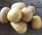 Ferme du Mont de Cuy - Pomme De Terre Ferme Celtiane