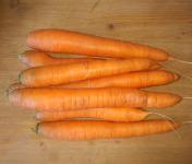Au Champ - Les bio p'tits légumes - Carottes Nantaises - 1 kg