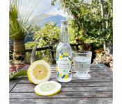 La Maison du Citron - Limonade au Citron de Menton Bio