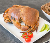 Ô'Poisson - Tourteau Cuit (crabe) - Pièce De 800g/1kg - Coupé En Deux