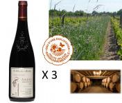 Le Clos des Motèles - AOC Anjou Rouge 2018 : Cuvée Sainte-Verge (3 Bouteilles)