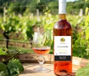 Domaine la Paganie - Rosé Cuvée des filles 3 Bouteilles - Vin de France