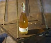 Domaine 5 Autels - Cidre Bio - le Brut