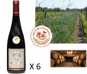 Le Clos des Motèles - AOC Anjou Rouge 2017 : Cuvée du Toarcien (6 Bouteilles)