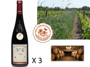 Le Clos des Motèles - AOC Anjou Rouge 2017 : Cuvée du Toarcien (3 Bouteilles)