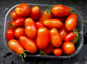 Multiproductions - Cédric Joliveau - Tomate Cerise Rouge