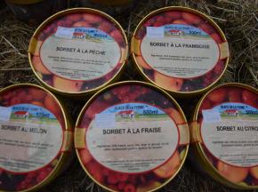 Les Glaces de la Promesse - Assortiment De Sorbet Citron,fraise,framboise,pêche Et Melon 5x 500 Ml