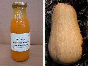 Multiproductions - Cédric Joliveau - Velouté de Courge Sucrine du Berry : 1 bouteille de 50 cl