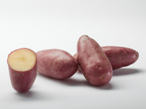 Maison Bayard - Pommes De Terre Cheyenne