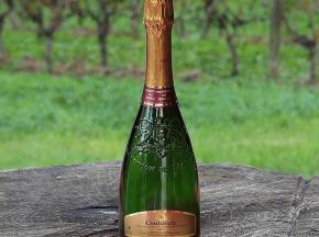 Nature viande - Domaine de la Coutancie - Domaine de coutancie vin effervécent méthode traditionnelle blanc x12