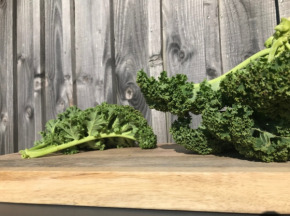 La Ferme du Polder Saint-Michel - Chou Kale Bio Croquant