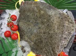 Poissonnerie Le Marlin - Turbot - 1,25kg