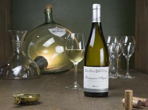 Dyvin - Domaine Guy & Yvan Dufouleur - Bourgogne Aligoté - Lot de 6 bouteilles