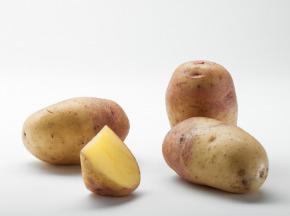 Maison Bayard - Pommes De Terre Carolus