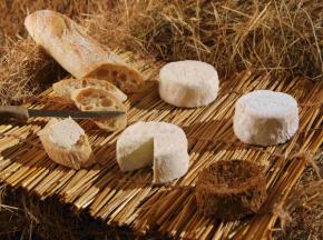 Fromagerie de la Chapelle Saint Jean - Bray Picard - 12 Pièces