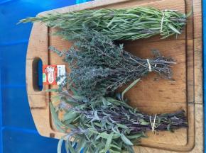La Boite à Herbes - Tisane Thym/sauge/romarin