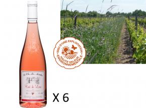 Le Clos des Motèles - Aoc Rosé De Loire 2018. 6 Bouteilles