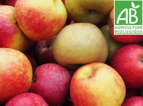 Mon Petit Producteur - Trio De Pommes [vendu Par 2,5kg]