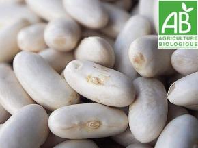 Mon Petit Producteur - Haricot Lingot Blanc Bio [500g]