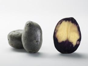 Maison Bayard - Pommes De Terre Double Fun
