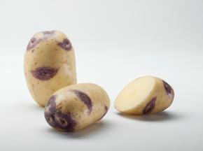Maison Bayard - Pommes De Terre Blue Belle