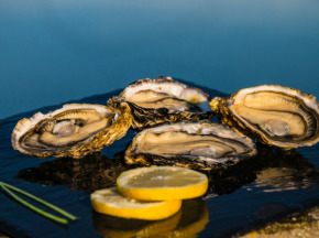 Les huîtres Gaboriau Frères - 24 Huîtres Spéciales N°3