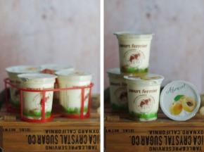 Ferme Chambon - Yaourts au Lait Cru de Vache et aux Fruits (Abricots) x8