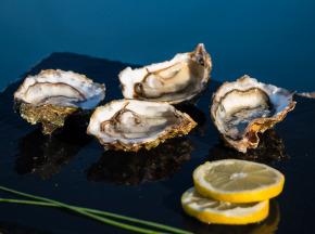 Les huîtres Gaboriau Frères - 36 Huîtres Fines De Claire N°3