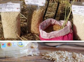 """Les Délices du Scamandre - Riz Bio Semi-complet """"Manobi"""" IGP Riz de Camargue - 20kg"""