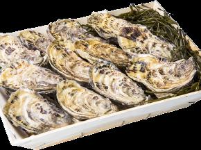 Les Huîtres Chaumard - Huîtres De Paimpol - 5 Douzaines De 2 (60 Huîtres)