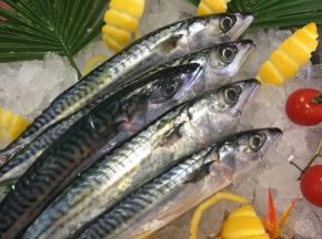 Poissonnerie Le Marlin - Maquereaux - 500g